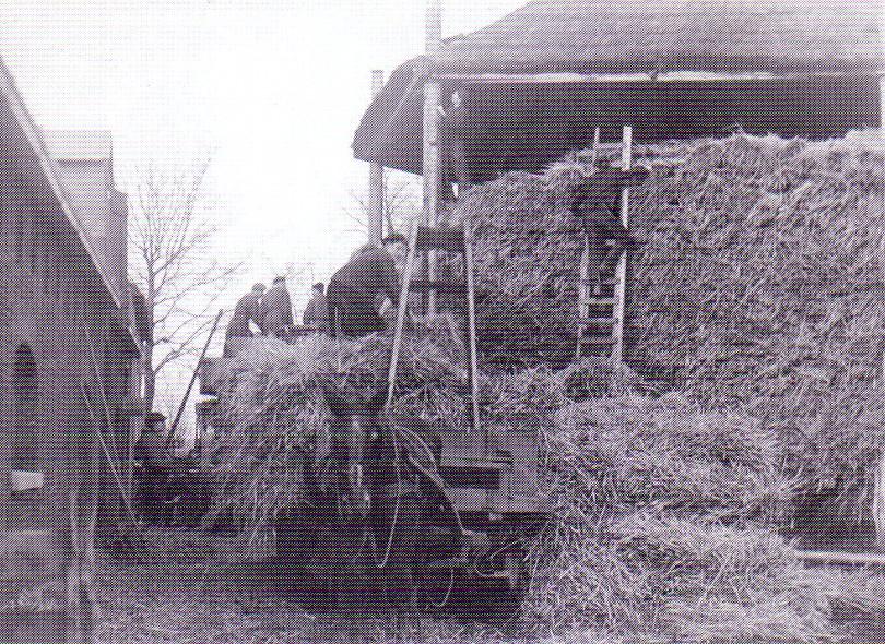 Hooibouw Boerderij Burgerdijkseweg De Lier