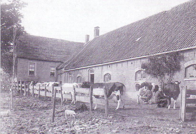 Boerderij Burgerdijkseweg De Lier